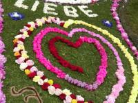 Blumenteppich_Rannungen_2